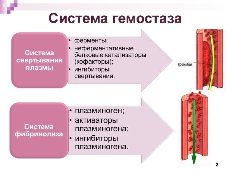 Коагулограммы крови