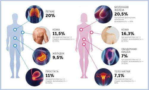 Результаты анализов крови на рак