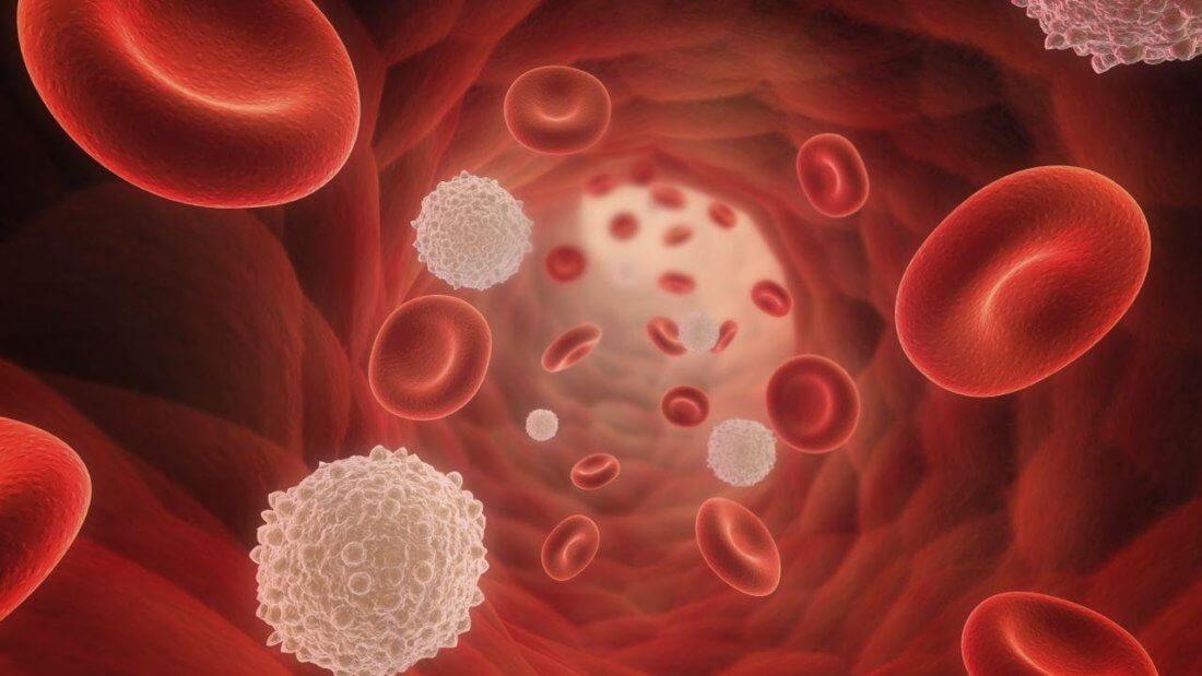 Низкий уровень тромбоцитов в крови