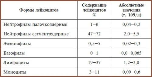 norma eritrofilov