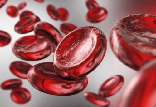 Повышаем гемоглобин