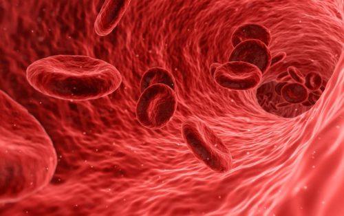 Фетальный гемоглобин в отличие от взрослого способен thumbnail