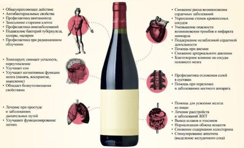 polza vina