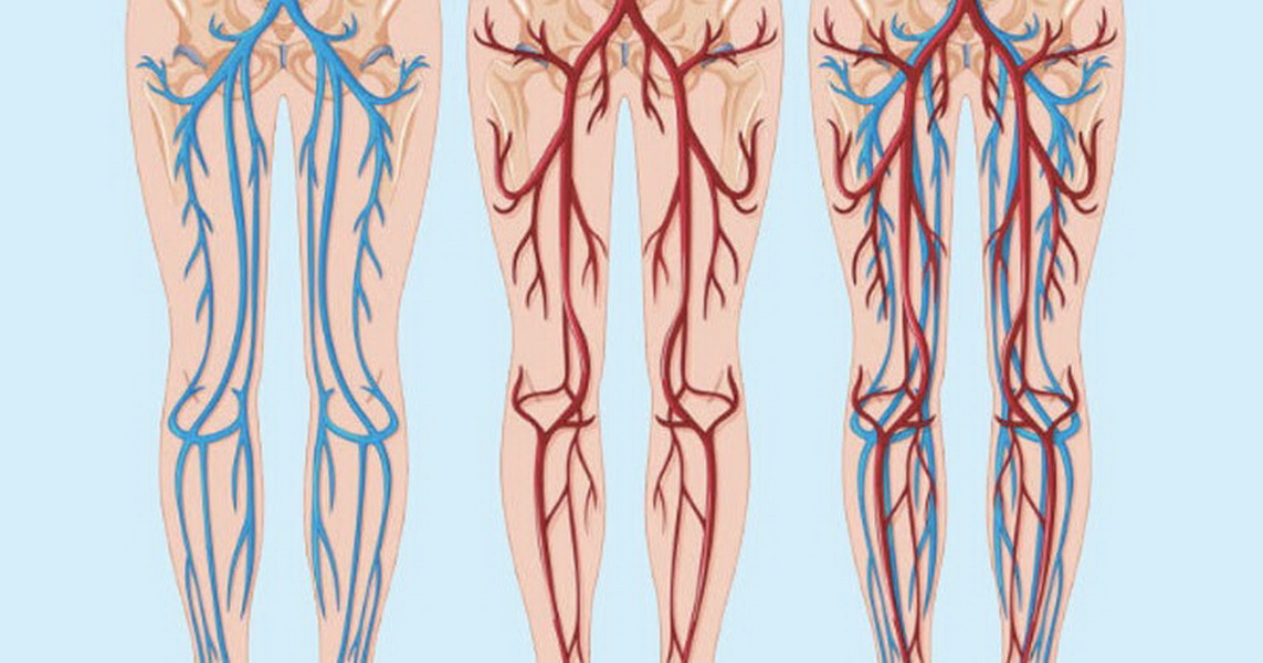 кровообращение ног
