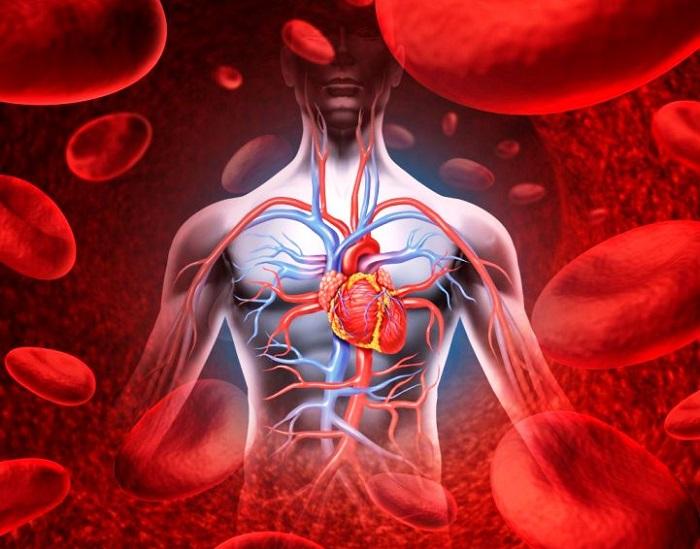 Недостаточность кровообращения: классификация, степени, код по мкб 10, причины и симптомы