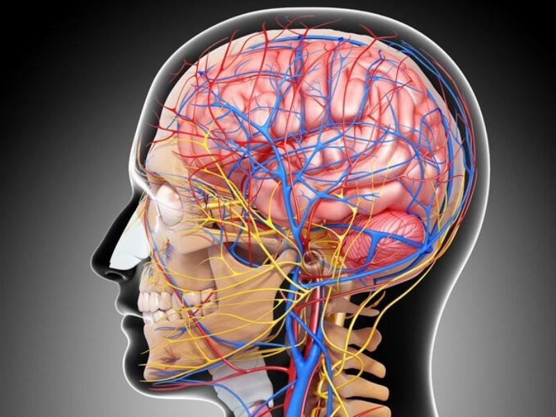 Затруднение венозного оттока головного мозга